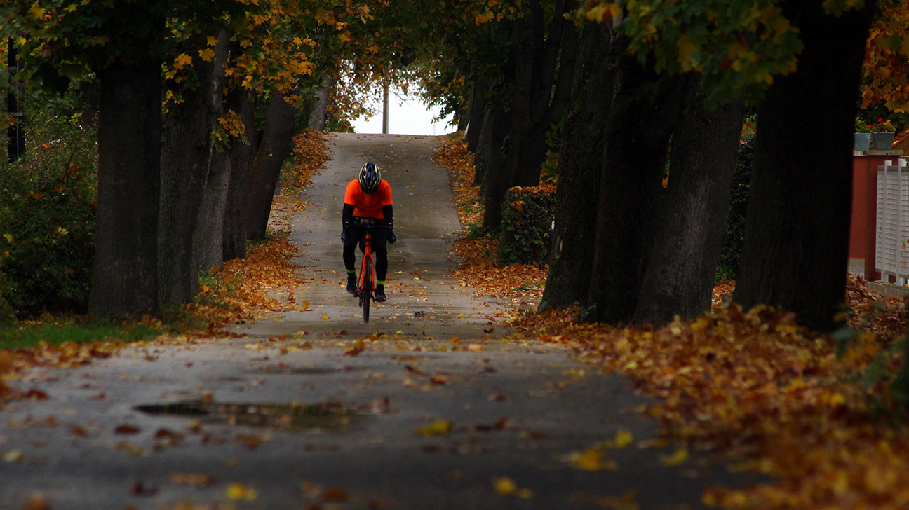 Solitary Cyclist on a Road in Fall